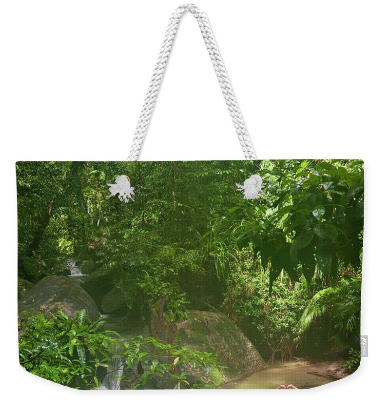Scenics Weekender Tote Bag featuring the photograph Mossman Gorge Daintree National Park by Peter Adams