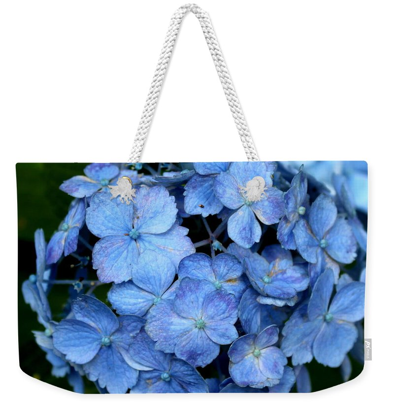 My Blue Heaven Weekender Tote Bag featuring the photograph My Blue Heaven by Shannon Louder