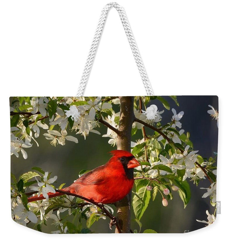 Nature Weekender Tote Bag featuring the photograph Red Cardinal In Flowers by Nava Thompson