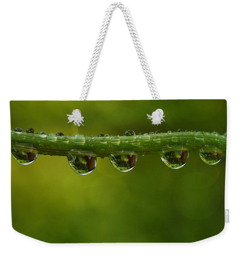 Backgrounds Weekender Tote Bag featuring the photograph Natural Bridge by TouTouke A Y