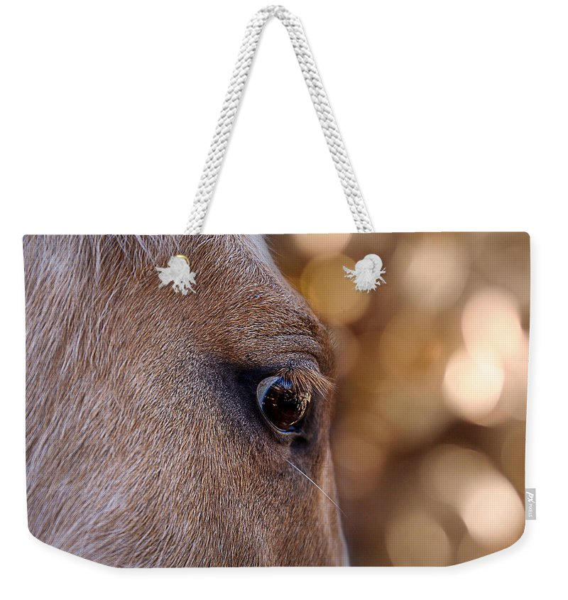 Animal Eye Weekender Tote Bag featuring the photograph On Watch by Doug Long
