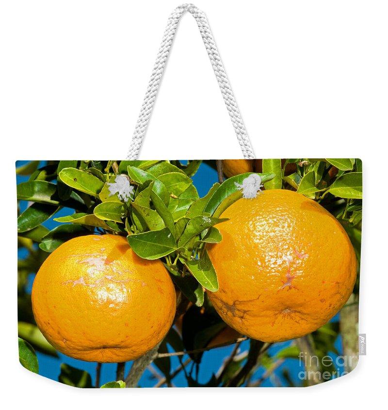 Food Weekender Tote Bag featuring the photograph Orange Fruit Growing On Tree by Millard H. Sharp