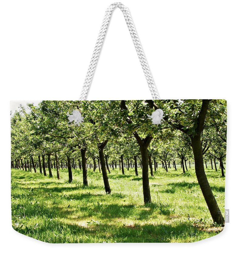 Agricultural Weekender Tote Bag featuring the photograph Orchard by Dan Radi