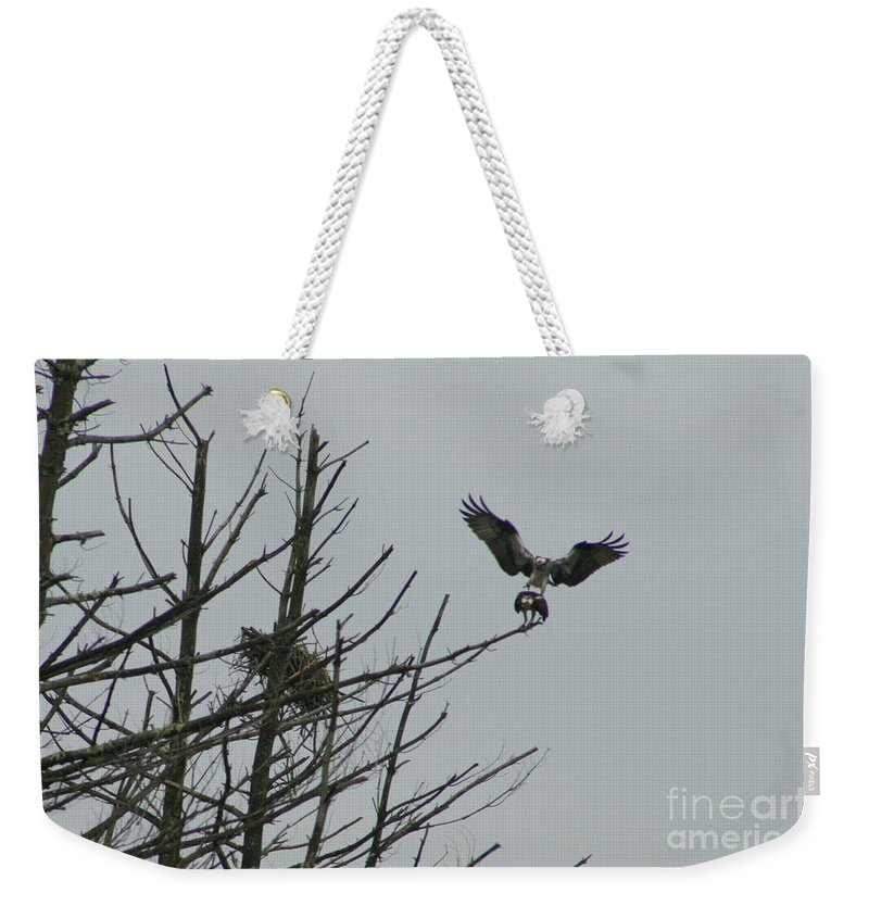 Osprey Weekender Tote Bag featuring the photograph Osprey Love by Neal Eslinger