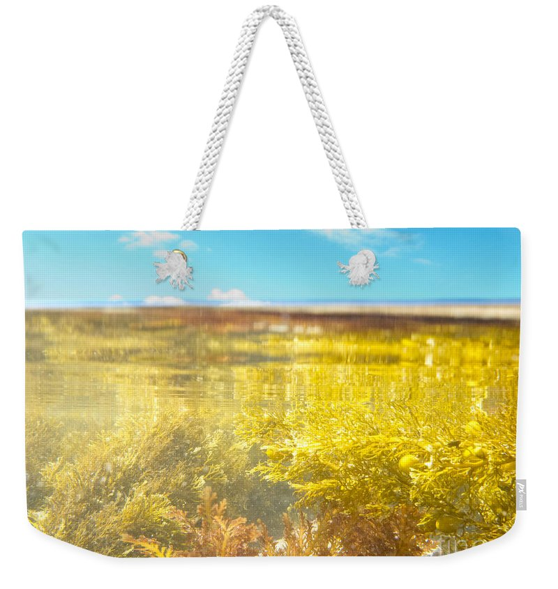 Above Weekender Tote Bag featuring the photograph Over-under Split Shot Of Clear Water In Tidal Pool by Stephan Pietzko