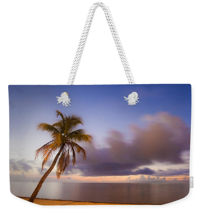 Key Weekender Tote Bag featuring the photograph Palm by Scott Meyer