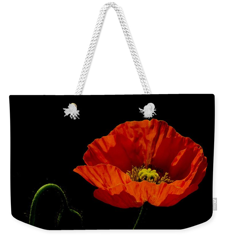 Background Weekender Tote Bag featuring the photograph Papaver by TouTouke A Y