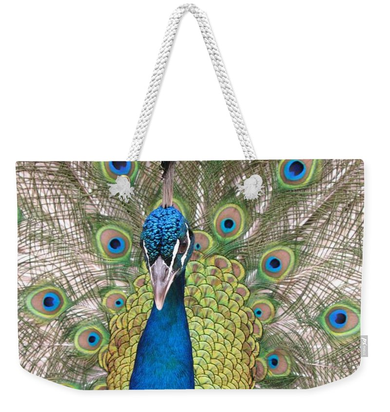 Peacock Weekender Tote Bag featuring the photograph Peacock Full Plumage by Ian Mcadie