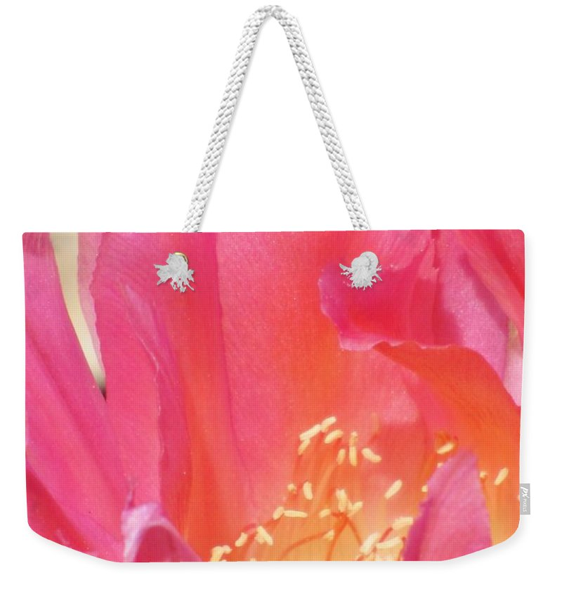 Cactus Flower Weekender Tote Bag featuring the photograph Pink Petals by Michelle Cassella