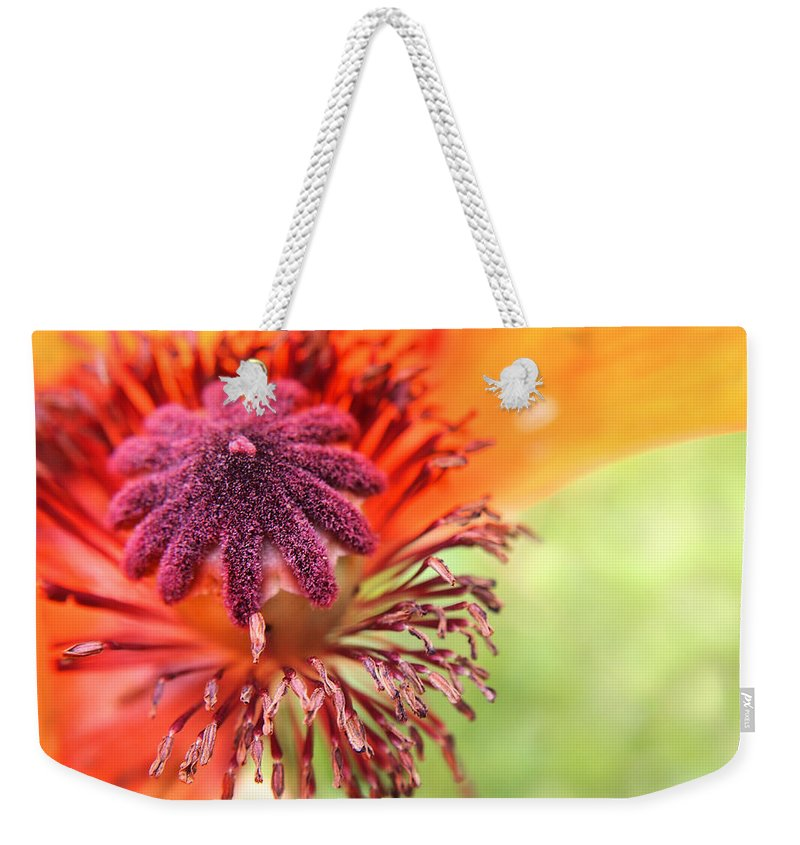 Poppy Weekender Tote Bag featuring the photograph Poppy by Angie Rea