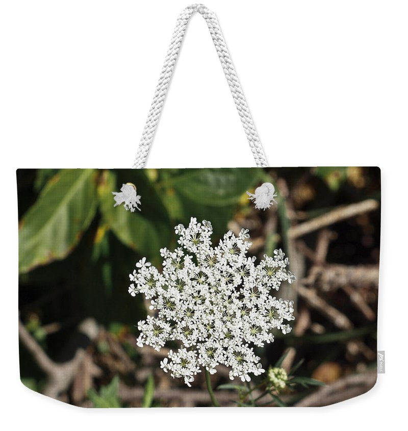 Bloom Weekender Tote Bag featuring the photograph Queen Anne's Lace by Howard Stapleton