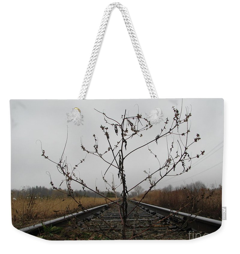 Tree Weekender Tote Bag featuring the photograph Rebirth by Michael Krek