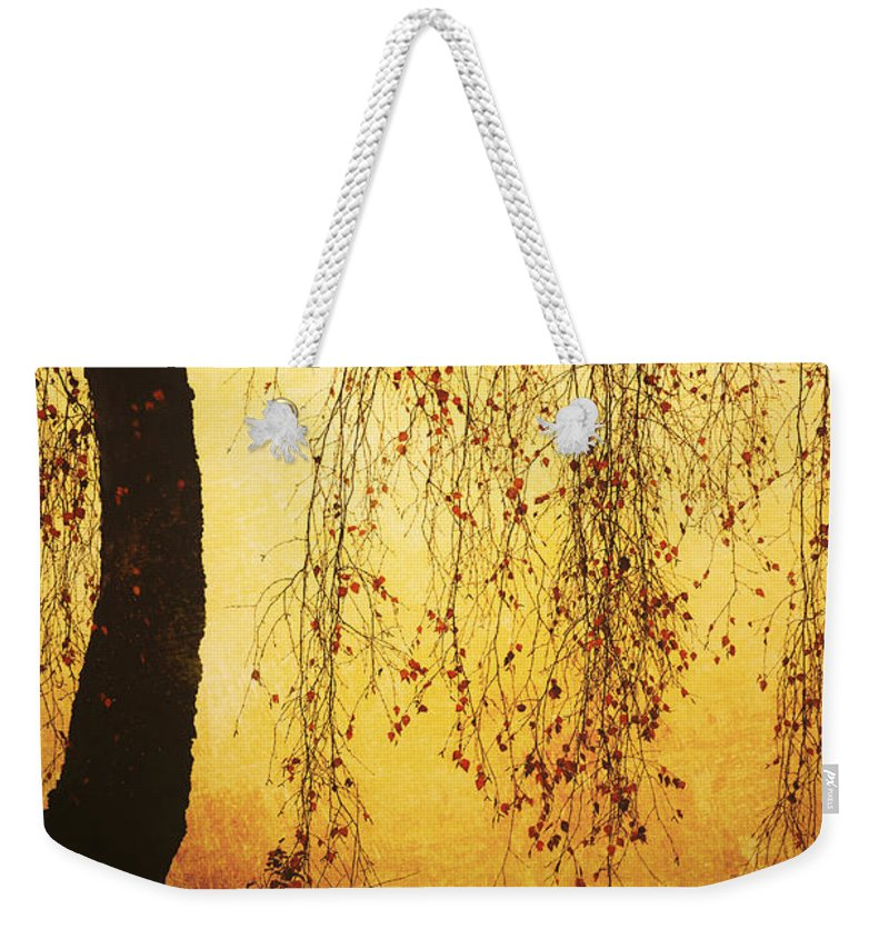 Tree Weekender Tote Bag featuring the photograph Red Leaves by Jana Behr