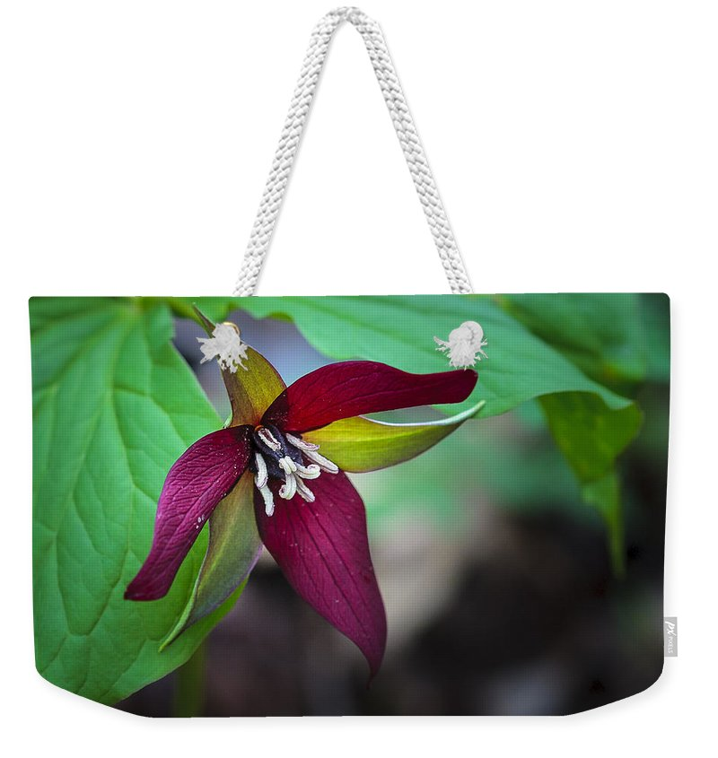Beauty Weekender Tote Bag featuring the photograph Red Trillium by Jack R Perry