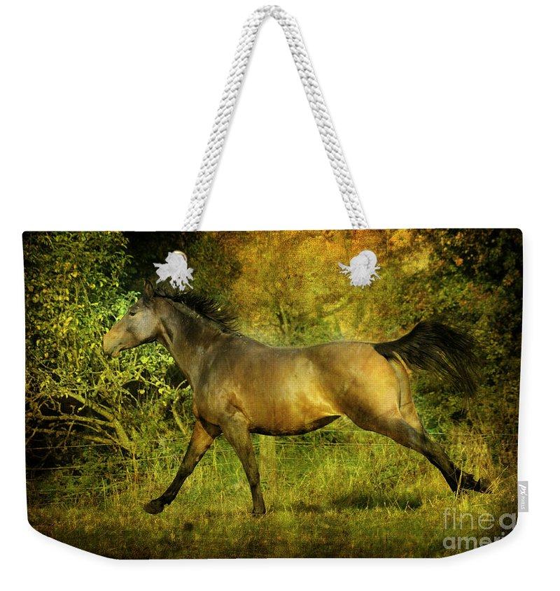 Horses Weekender Tote Bag featuring the photograph Running Free by Angel Ciesniarska