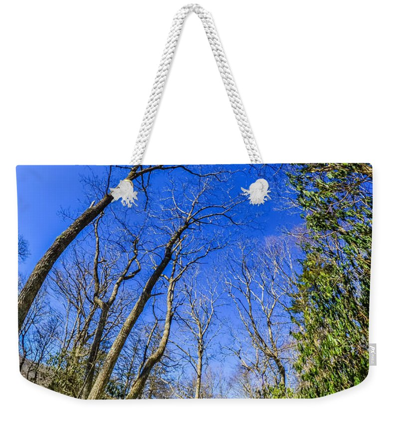 Snow Weekender Tote Bag featuring the photograph Snow Covered Road Leads Through The Wooded Forest by Alex Grichenko