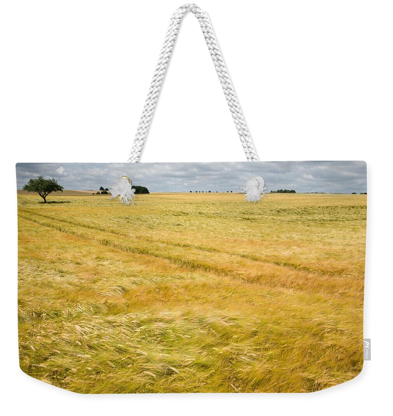 Borg Weekender Tote Bag featuring the photograph Solitary Tree by Ian Middleton