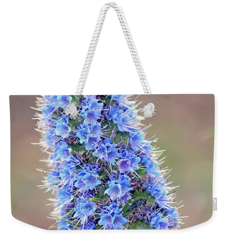 Color Photography Weekender Tote Bag featuring the photograph Some Of The Colors Of Spring by Jim Fitzpatrick