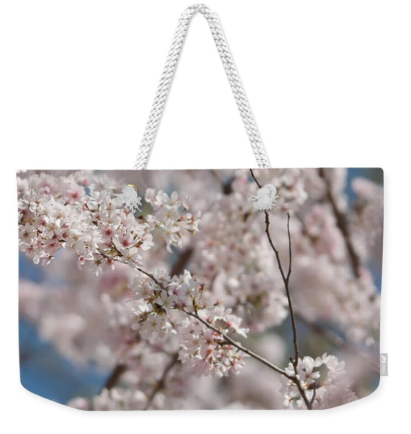 White Weekender Tote Bag featuring the photograph Spring Bloom by Alex Grichenko