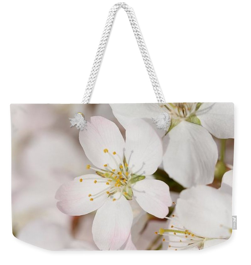 Flowers Weekender Tote Bag featuring the photograph Spring Flower by Heike Hultsch