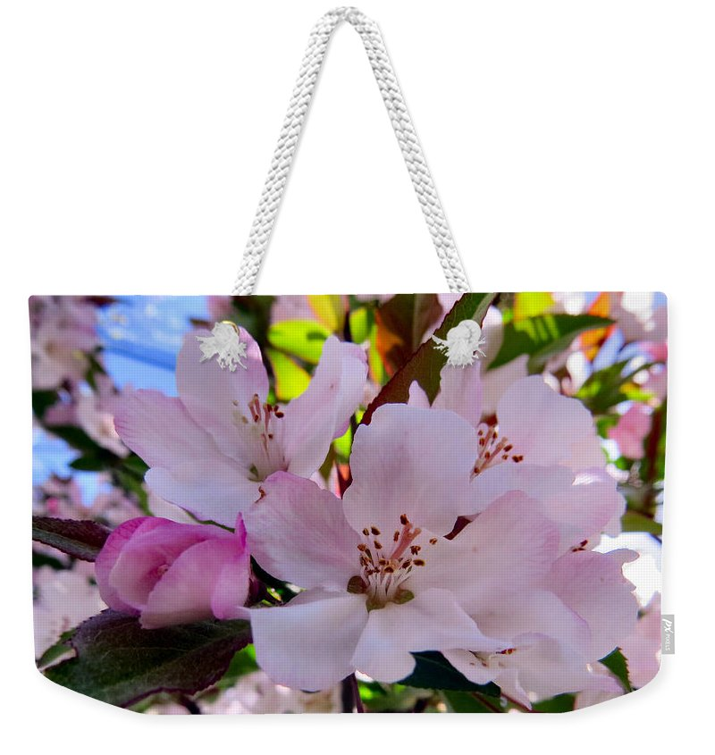 Sun Weekender Tote Bag featuring the photograph Spring Form by Art Dingo