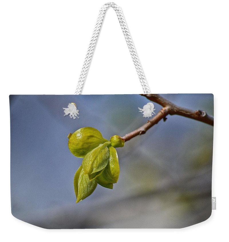 Spring Weekender Tote Bag featuring the photograph Spring Is Coming by Bill Owen