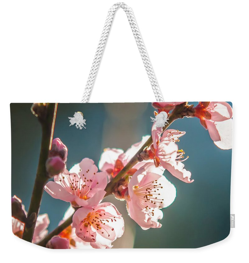 White Weekender Tote Bag featuring the photograph Spring Peach Tree Blossom by Alex Grichenko