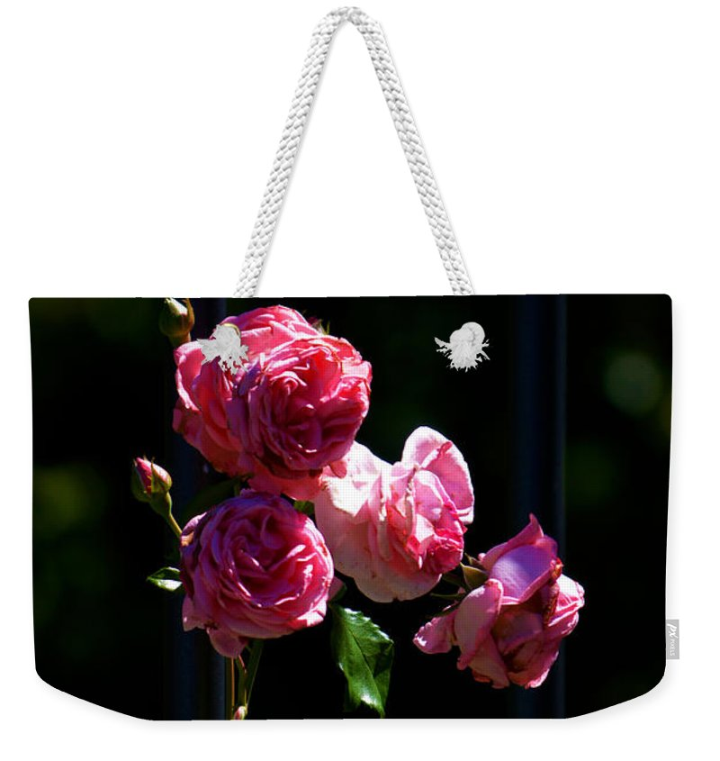 Stand By Me Weekender Tote Bag featuring the photograph Stand By Me by Susanne Van Hulst