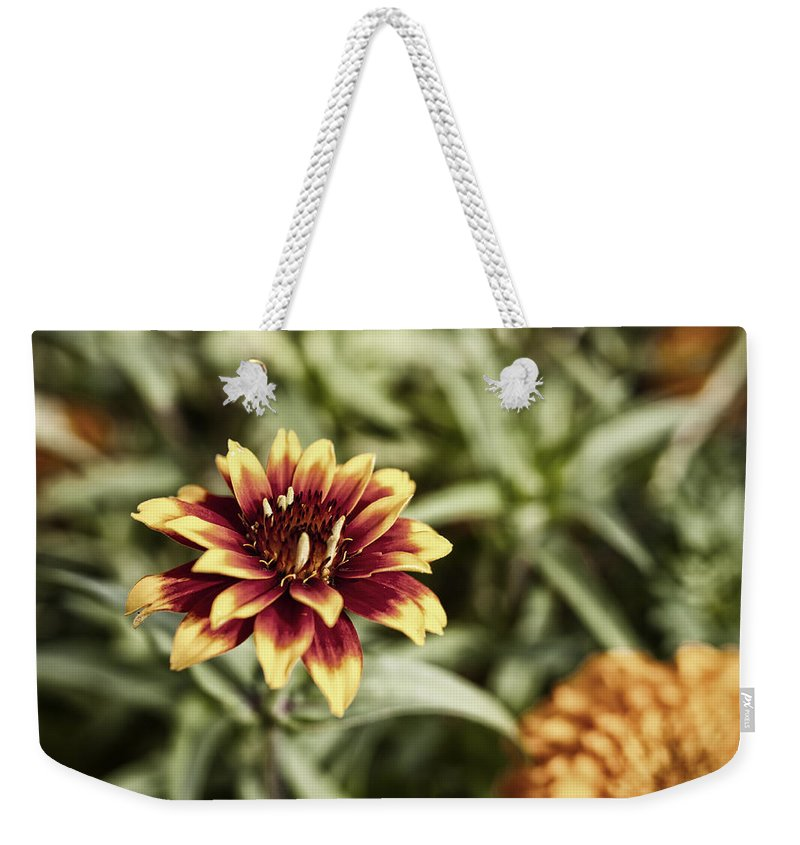 Flowers Weekender Tote Bag featuring the photograph Summer Jardin by Miguel Winterpacht