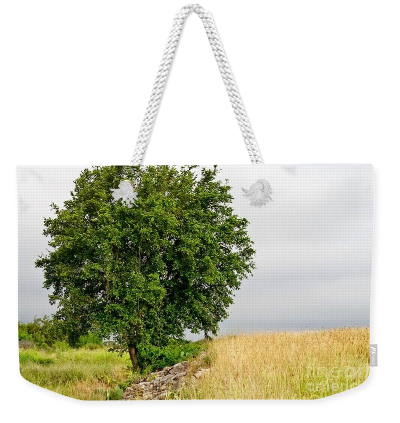 Summer Weekender Tote Bag featuring the photograph Summer Tree by Gary Richards