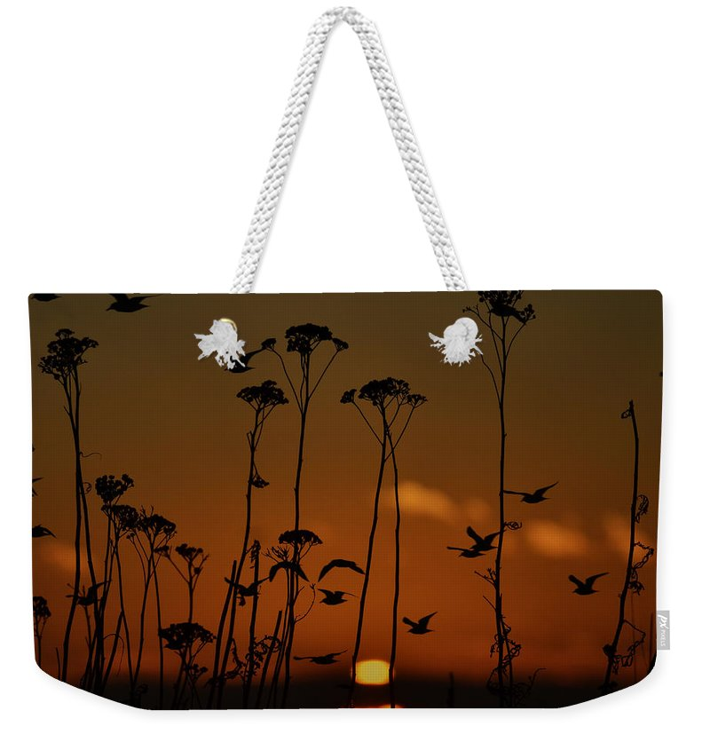 Vancouver Weekender Tote Bag featuring the photograph Sundays Gone by The Artist Project