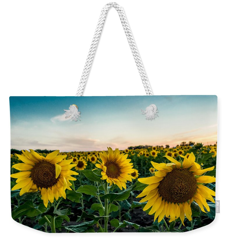 Blooming Weekender Tote Bag featuring the photograph Sister Sunflowers by Melinda Ledsome