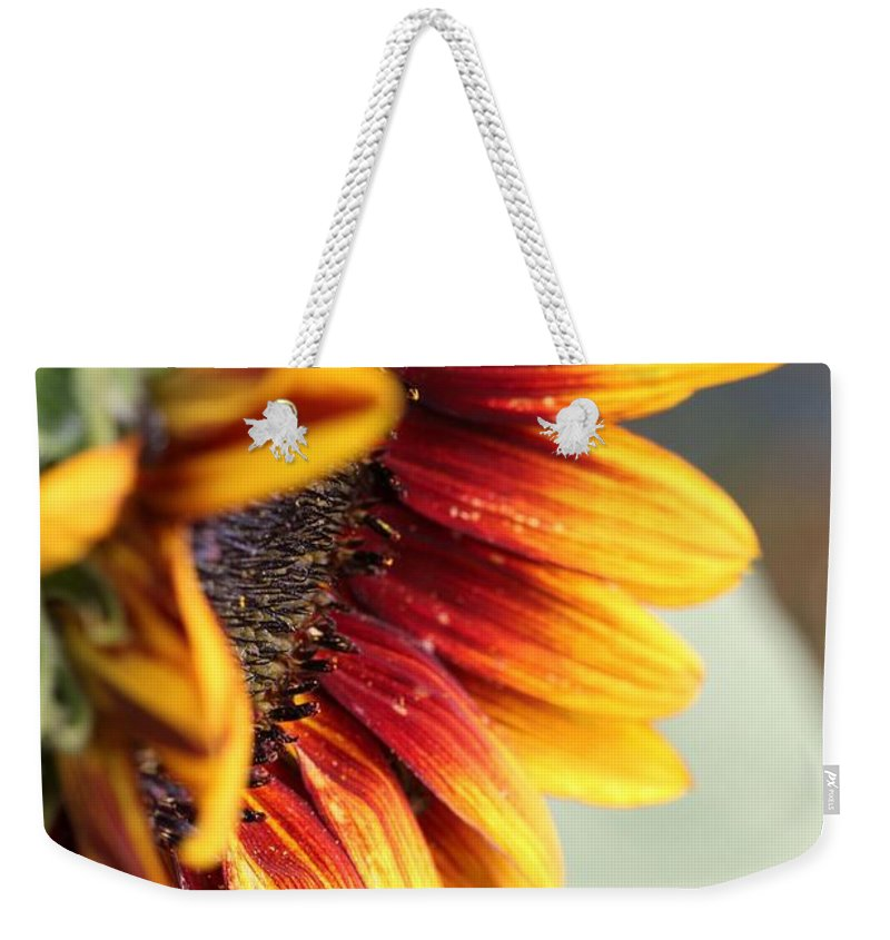 Mccombie Weekender Tote Bag featuring the photograph Sunflower Named The Joker by J McCombie