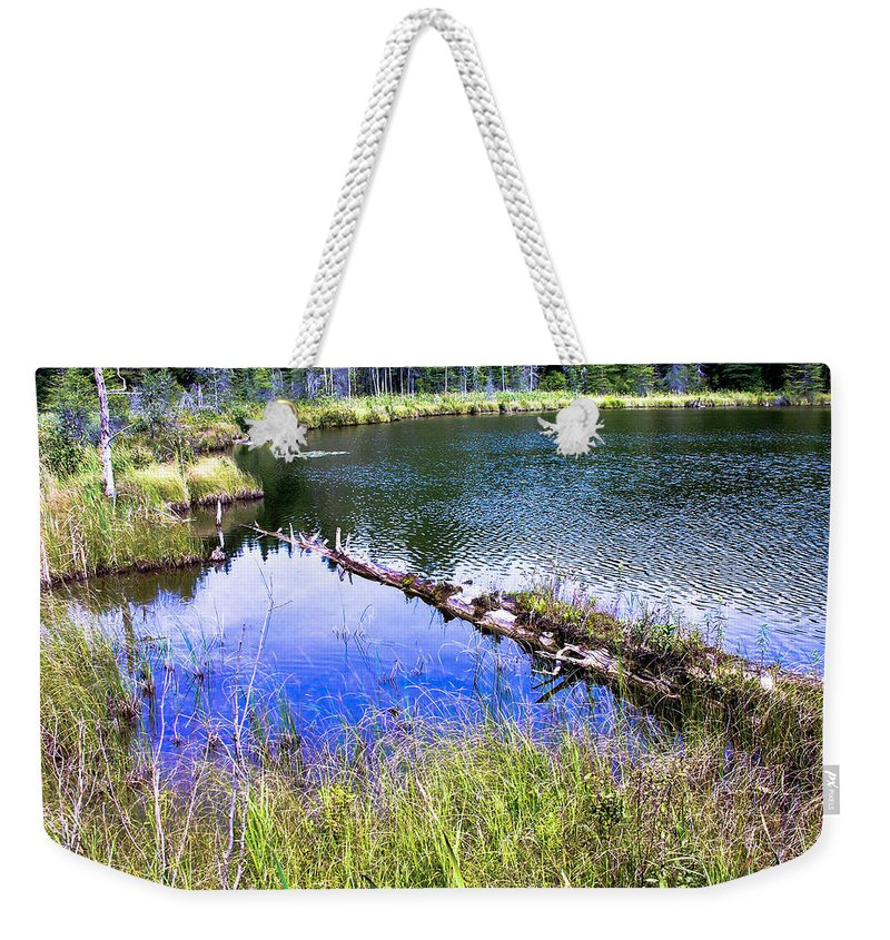Swamp Weekender Tote Bag featuring the photograph Swamp by Sherman Perry