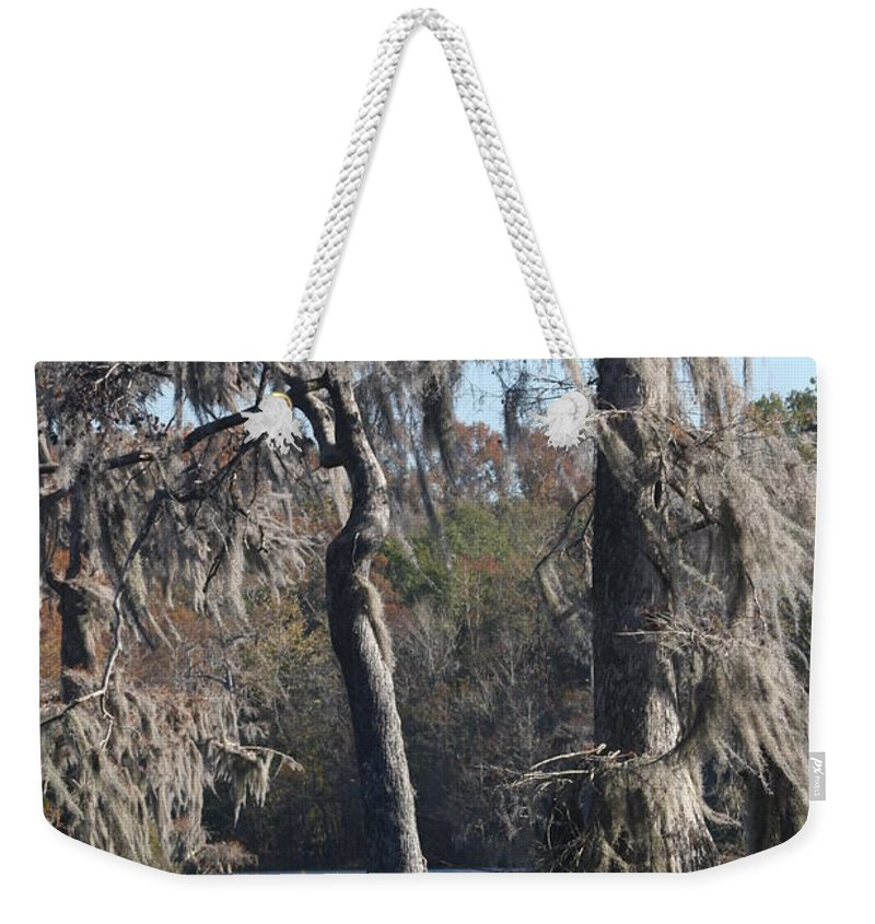 Swamp Weekender Tote Bag featuring the photograph Swampreflection by Christiane Schulze Art And Photography