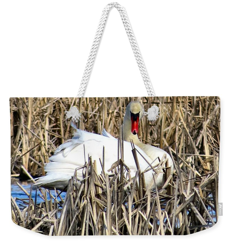 Swan Weekender Tote Bag featuring the photograph Swanly by Art Dingo