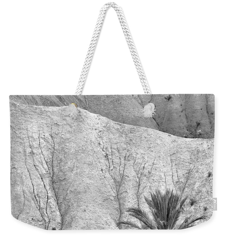 Palm Weekender Tote Bag featuring the photograph Tabernas Desert by Guido Montanes Castillo