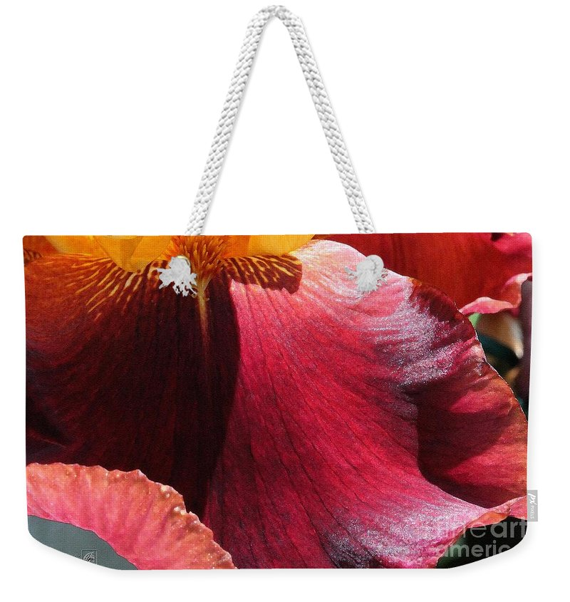 Mccombie Weekender Tote Bag featuring the painting Tall Bearded Iris Named Ancient Echoes by J McCombie