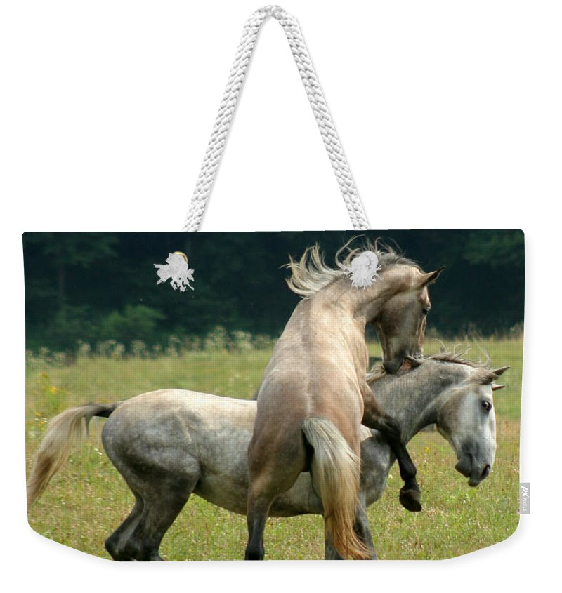 Horse Weekender Tote Bag featuring the photograph The Bite by Angel Tarantella
