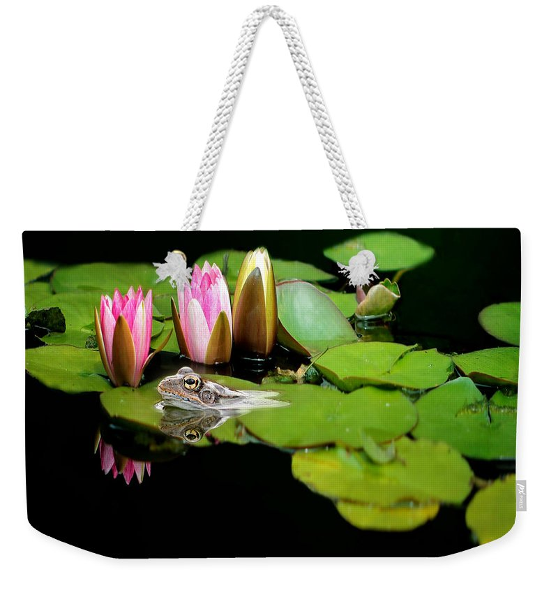 Toad Weekender Tote Bag featuring the photograph The Frog by Heike Hultsch