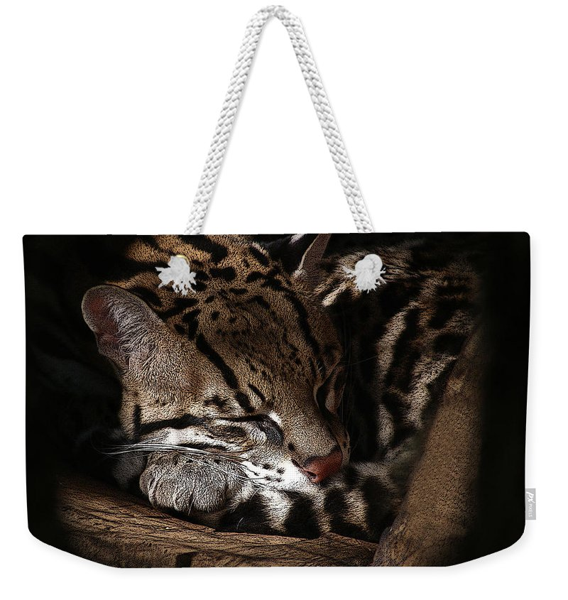 Animals Weekender Tote Bag featuring the photograph The Ocelot by Ernie Echols