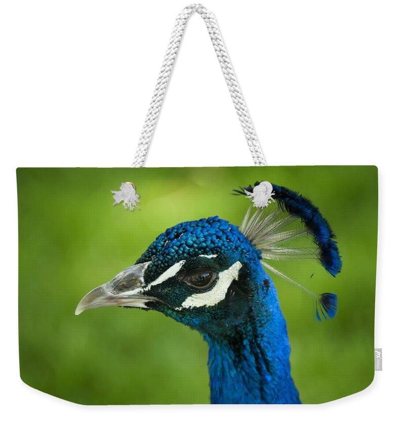 Peacock Weekender Tote Bag featuring the photograph The Regal Peacock by Saija Lehtonen