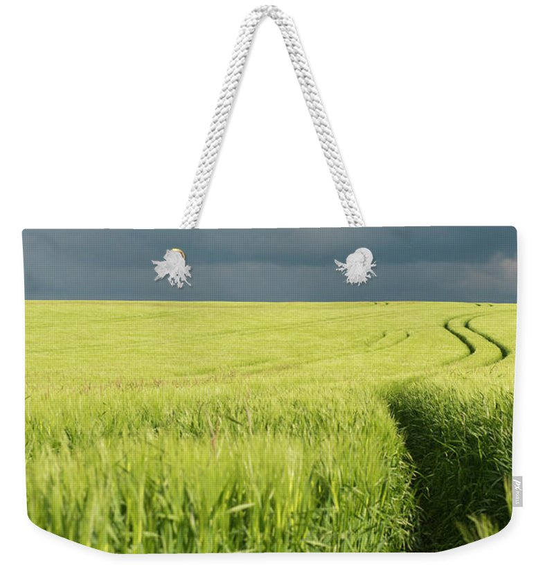 Tranquility Weekender Tote Bag featuring the photograph Tire Tracks In Grain Field by Thomas Winz