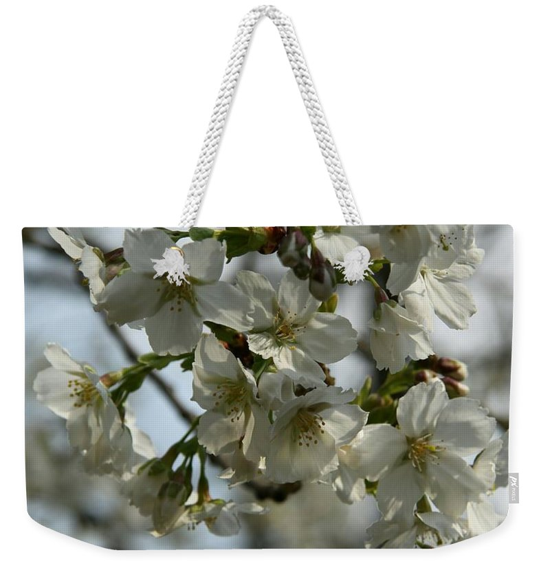 Cherry Blossom Weekender Tote Bag featuring the photograph White Cherry Blossoms by Christiane Schulze Art And Photography