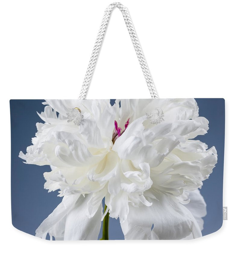 Peony Weekender Tote Bag featuring the photograph White Peony Flower by Elena Elisseeva