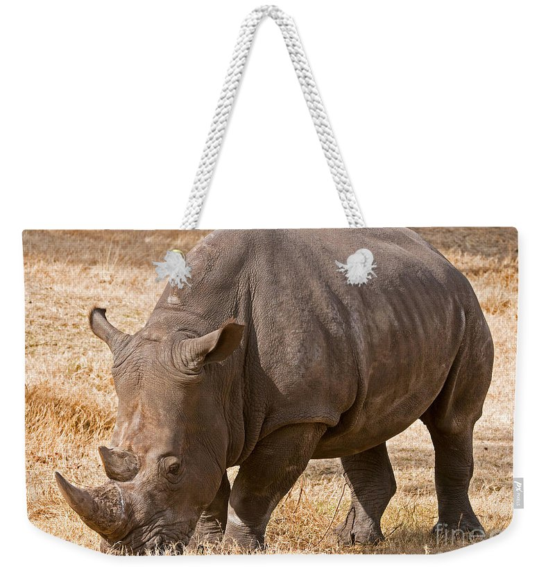Nature Weekender Tote Bag featuring the photograph White Rhinoceros by Millard H. Sharp