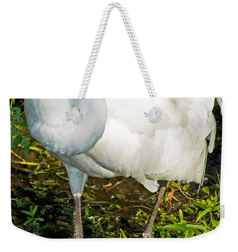 Nature Weekender Tote Bag featuring the photograph Whooping Crane by Millard H. Sharp