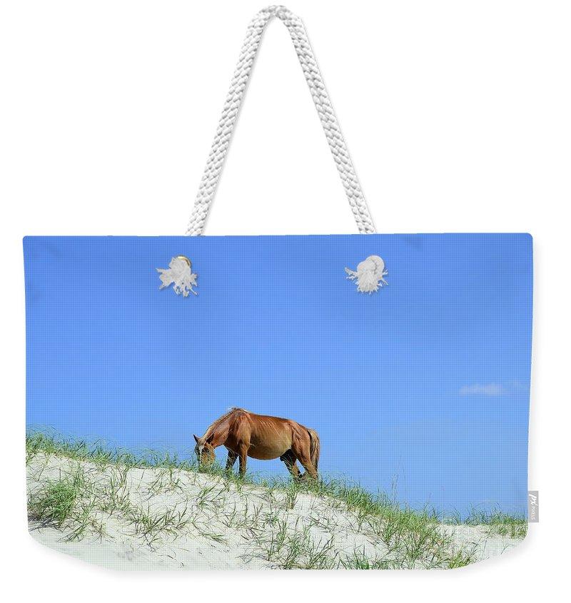 Wild Horses Of Corolla Weekender Tote Bag featuring the photograph Wild Horses Of Corolla by Allen Beatty