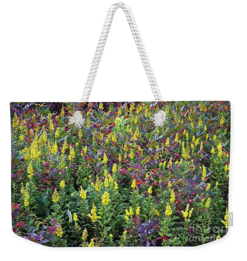 Martha's Vineyard Weekender Tote Bag featuring the photograph Wildflower Meadow by John Greim