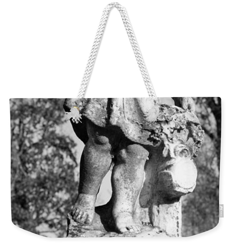 Winged Weekender Tote Bag featuring the photograph Winged Girl 6 by Douglas Barnett